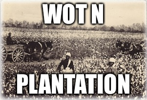 Wot n plantation  |  WOT N; PLANTATION | image tagged in wot in tarnation,racism,dark humor,funny,dank memes | made w/ Imgflip meme maker