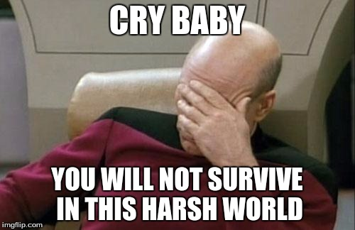 Captain Picard Facepalm Meme | CRY BABY YOU WILL NOT SURVIVE IN THIS HARSH WORLD | image tagged in memes,captain picard facepalm | made w/ Imgflip meme maker