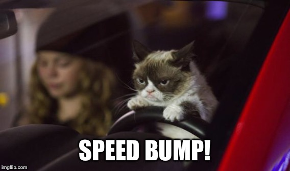 SPEED BUMP! | made w/ Imgflip meme maker