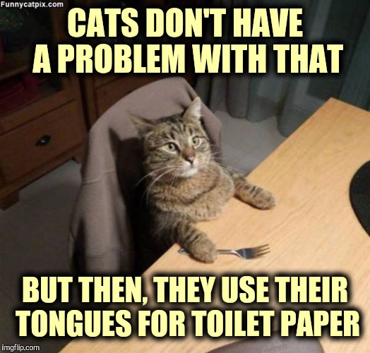 CATS DON'T HAVE A PROBLEM WITH THAT BUT THEN, THEY USE THEIR TONGUES FOR TOILET PAPER | made w/ Imgflip meme maker