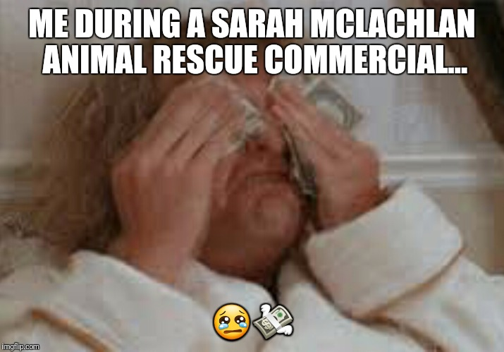ME DURING A SARAH MCLACHLAN ANIMAL RESCUE COMMERCIAL... 😢💸 | image tagged in animal rescue,sarah mclachlan,dumb and dumber,crying,why | made w/ Imgflip meme maker