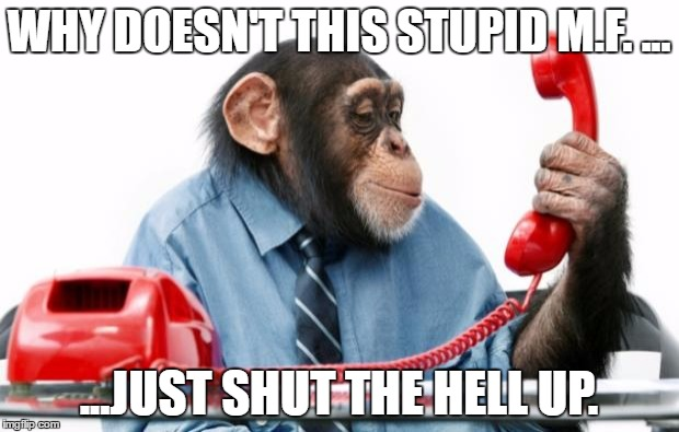 PhoneMonkey | WHY DOESN'T THIS STUPID M.F. ... ...JUST SHUT THE HELL UP. | image tagged in phonemonkey | made w/ Imgflip meme maker