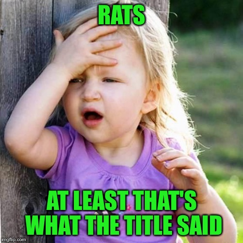 RATS AT LEAST THAT'S WHAT THE TITLE SAID | made w/ Imgflip meme maker