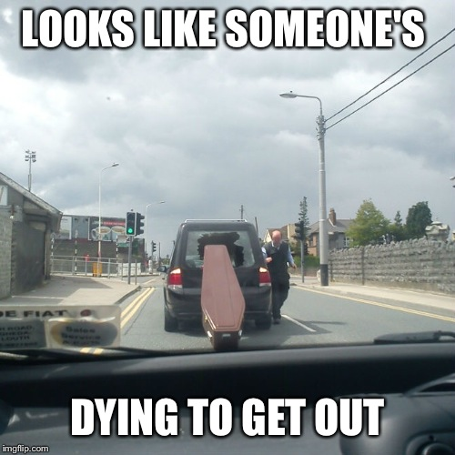 Literally  | LOOKS LIKE SOMEONE'S DYING TO GET OUT | image tagged in coffin,death,pun,memes,funny | made w/ Imgflip meme maker