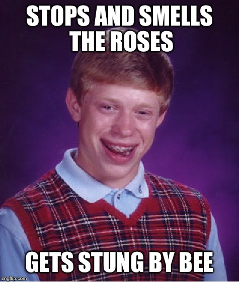 Bad Luck Brian Meme | STOPS AND SMELLS THE ROSES GETS STUNG BY BEE | image tagged in memes,bad luck brian | made w/ Imgflip meme maker