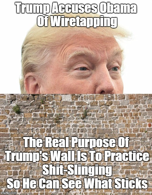 The Real Purpose Of Trump's Wall | Trump Accuses Obama Of Wiretapping The Real Purpose Of Trump's Wall Is To Practice Shit-Slinging So He Can See What Sticks | image tagged in devious donald,despicable donald,deplorable donald,lying donald,deceptive donald,mendacious donald | made w/ Imgflip meme maker