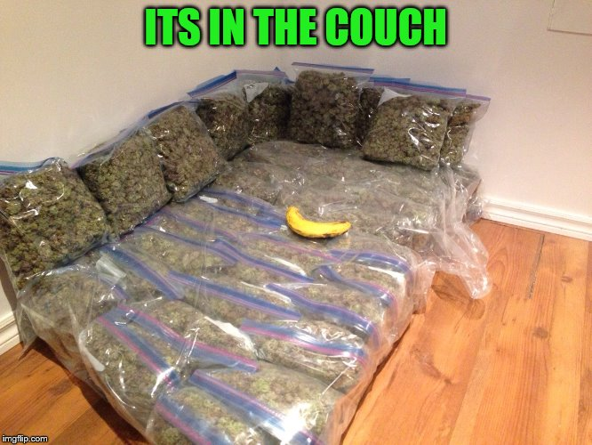 Kushion | ITS IN THE COUCH | image tagged in kushion | made w/ Imgflip meme maker