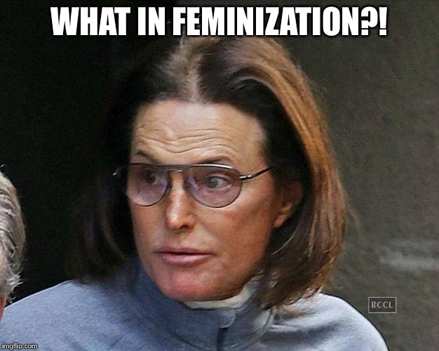 WHAT IN FEMINIZATION?! | made w/ Imgflip meme maker