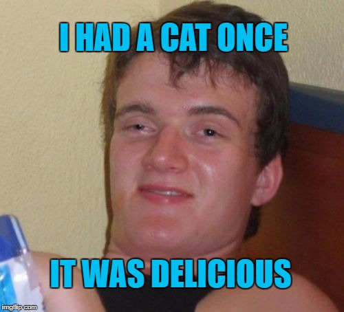 Ex Cat Owners Unite | I HAD A CAT ONCE IT WAS DELICIOUS | image tagged in memes,10 guy,cats,funny cats,funny | made w/ Imgflip meme maker