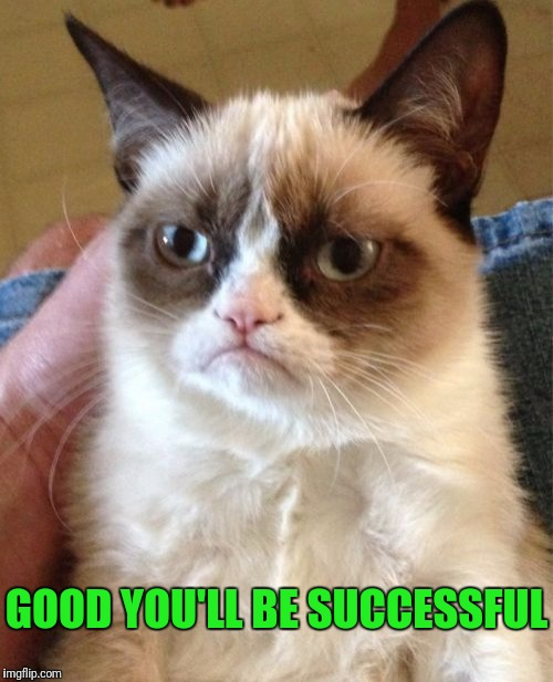 Grumpy Cat Meme | GOOD YOU'LL BE SUCCESSFUL | image tagged in memes,grumpy cat | made w/ Imgflip meme maker