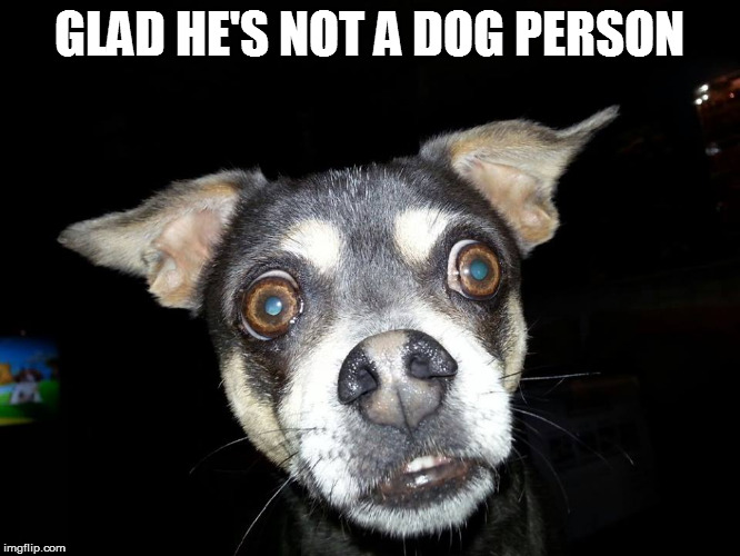 GLAD HE'S NOT A DOG PERSON | made w/ Imgflip meme maker