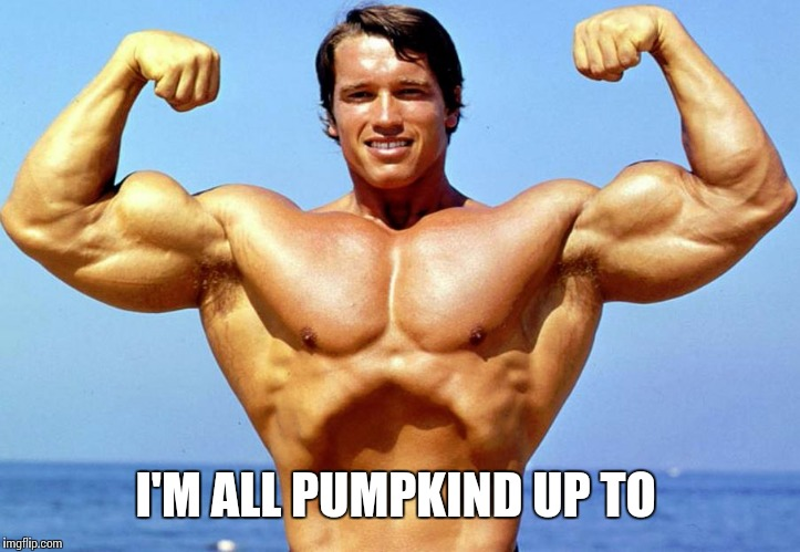 I'M ALL PUMPKIND UP TO | made w/ Imgflip meme maker