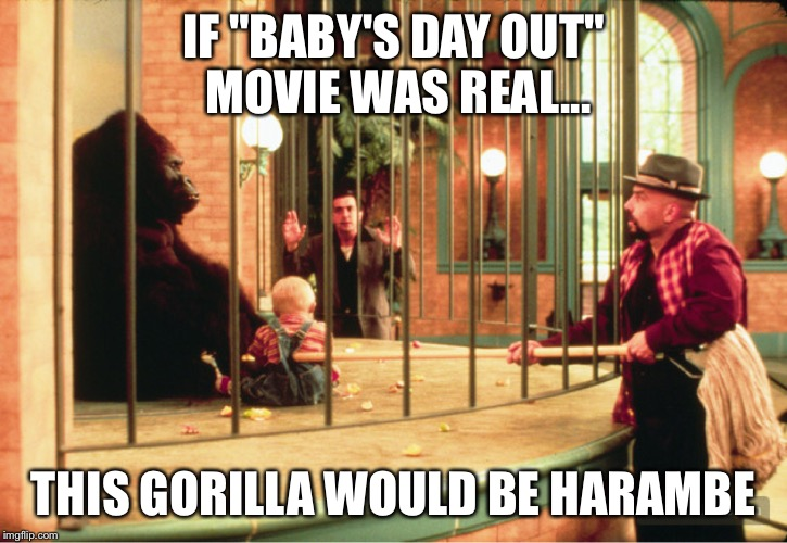 "IF ""BABY'S DAY OUT"" MOVIE WAS REAL... THIS GORILLA WOULD BE HARAMBE 