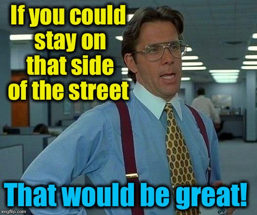 That Would Be Great Meme | If you could stay on that side of the street That would be great! | image tagged in memes,that would be great | made w/ Imgflip meme maker