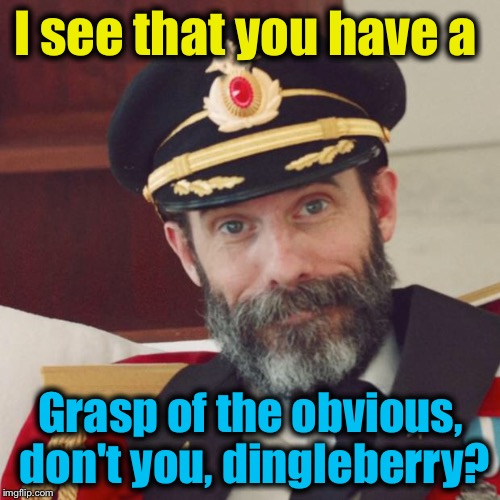 I see that you have a Grasp of the obvious, don't you, dingleberry? | made w/ Imgflip meme maker