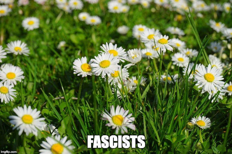 FASCISTS | image tagged in fascists,spring daisy flowers,brexit | made w/ Imgflip meme maker