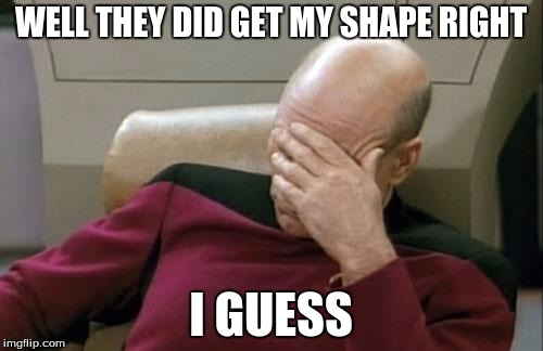 Captain Picard Facepalm Meme | WELL THEY DID GET MY SHAPE RIGHT I GUESS | image tagged in memes,captain picard facepalm | made w/ Imgflip meme maker