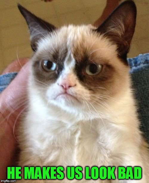 Grumpy Cat Meme | HE MAKES US LOOK BAD | image tagged in memes,grumpy cat | made w/ Imgflip meme maker