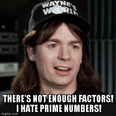 wayne's world | THERE'S NOT ENOUGH FACTORS! I HATE PRIME NUMBERS! | image tagged in wayne's world | made w/ Imgflip meme maker