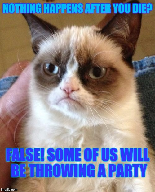 Grumpy Cat Meme | NOTHING HAPPENS AFTER YOU DIE? FALSE! SOME OF US WILL BE THROWING A PARTY | image tagged in memes,grumpy cat | made w/ Imgflip meme maker