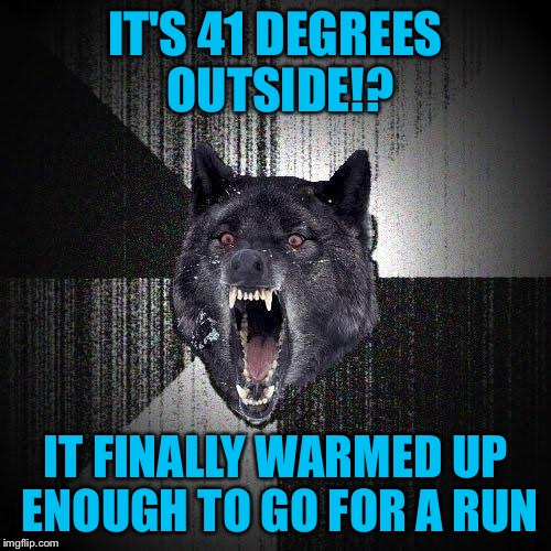 In shorts and a shirtsleeve shirt mind you | IT'S 41 DEGREES OUTSIDE!? IT FINALLY WARMED UP ENOUGH TO GO FOR A RUN | image tagged in memes,insanity wolf,41 f,outdoor run,cutting weight,fighting shape | made w/ Imgflip meme maker