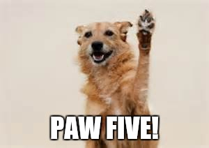Dog paw | PAW FIVE! | image tagged in dog paw | made w/ Imgflip meme maker