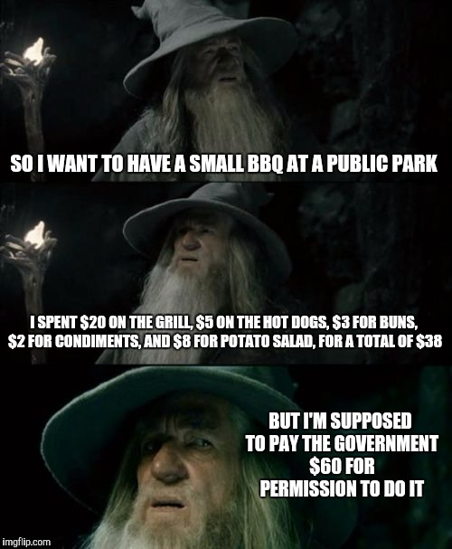 Confused Gandalf Meme | SO I WANT TO HAVE A SMALL BBQ AT A PUBLIC PARK I SPENT $20 ON THE GRILL, $5 ON THE HOT DOGS, $3 FOR BUNS, $2 FOR CONDIMENTS, AND $8 FOR POTA | image tagged in memes,confused gandalf | made w/ Imgflip meme maker