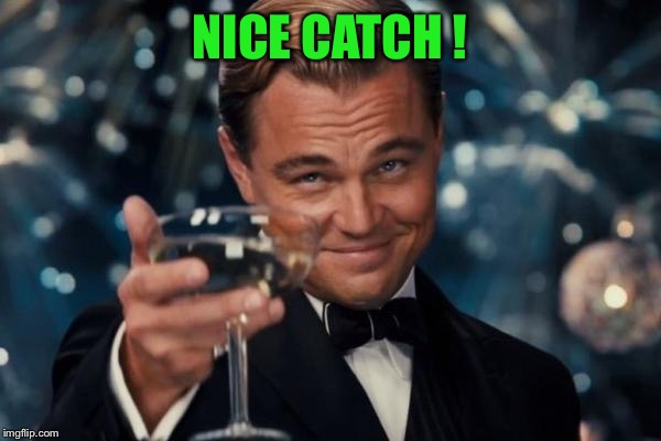 Leonardo Dicaprio Cheers Meme | NICE CATCH ! | image tagged in memes,leonardo dicaprio cheers | made w/ Imgflip meme maker