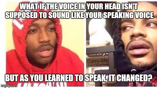 WHAT IF THE VOICE IN YOUR HEAD ISN'T SUPPOSED TO SOUND LIKE YOUR SPEAKING VOICE BUT AS YOU LEARNED TO SPEAK, IT CHANGED? | image tagged in memes,hits blunt | made w/ Imgflip meme maker
