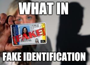 WHAT IN FAKE IDENTIFICATION | made w/ Imgflip meme maker