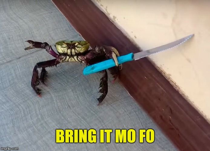 BRING IT MO FO | made w/ Imgflip meme maker