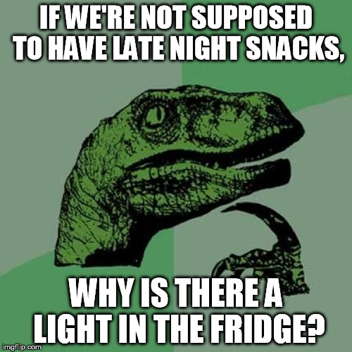 Late Night | IF WE'RE NOT SUPPOSED TO HAVE LATE NIGHT SNACKS, WHY IS THERE A LIGHT IN THE FRIDGE? | image tagged in memes,philosoraptor,funny,funny memes,food,logic | made w/ Imgflip meme maker