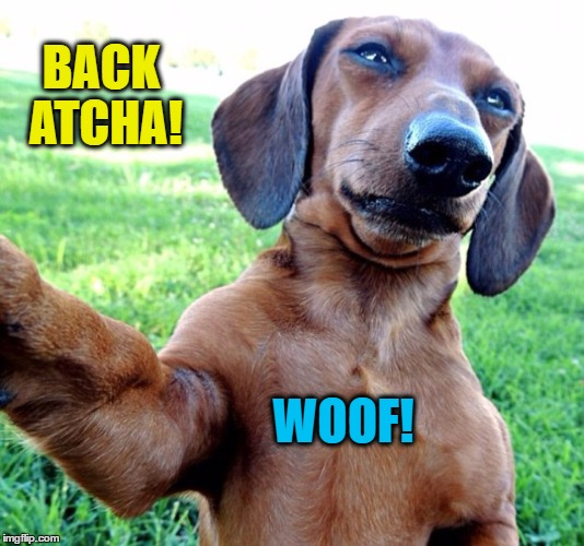 BACK ATCHA! WOOF! | made w/ Imgflip meme maker