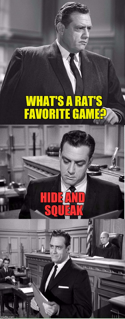 Perry Mason smells a rat | WHAT'S A RAT'S FAVORITE GAME? HIDE AND SQUEAK | image tagged in memes,perry mason,rats | made w/ Imgflip meme maker