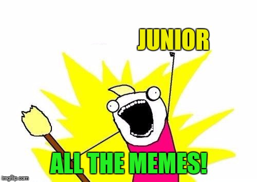 X All The Y Meme | JUNIOR ALL THE MEMES! | image tagged in memes,x all the y | made w/ Imgflip meme maker