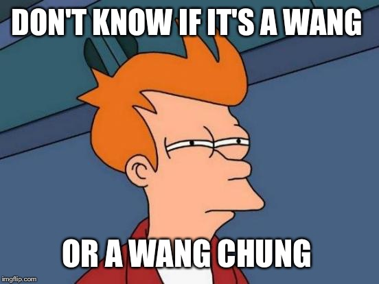 Futurama Fry Meme | DON'T KNOW IF IT'S A WANG OR A WANG CHUNG | image tagged in memes,futurama fry | made w/ Imgflip meme maker