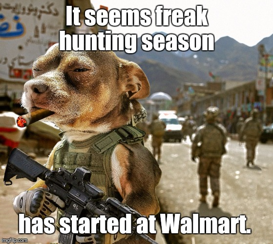 Army Dog | It seems freak hunting season has started at Walmart. | image tagged in army dog | made w/ Imgflip meme maker