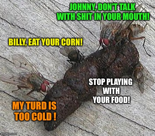 JOHNNY, DON'T TALK WITH SHIT IN YOUR MOUTH! BILLY, EAT YOUR CORN! MY TURD IS TOO COLD ! STOP PLAYING WITH YOUR FOOD! | made w/ Imgflip meme maker