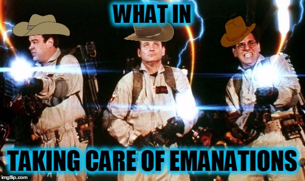 Don't cross the memes | WHAT IN TAKING CARE OF EMANATIONS | image tagged in memes,trends,ghostbusters,what in tarnation | made w/ Imgflip meme maker