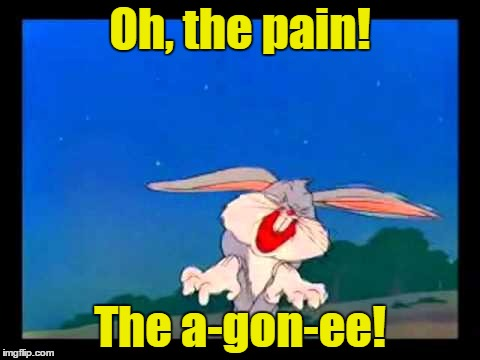 Oh, the pain! The a-gon-ee! | made w/ Imgflip meme maker
