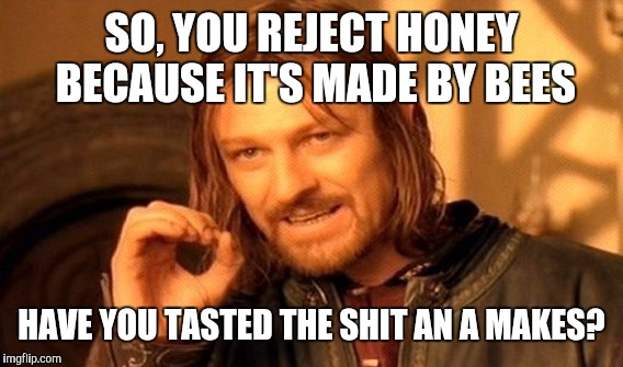 One Does Not Simply Meme | SO, YOU REJECT HONEY BECAUSE IT'S MADE BY BEES HAVE YOU TASTED THE SHIT AN A MAKES? | image tagged in memes,one does not simply | made w/ Imgflip meme maker