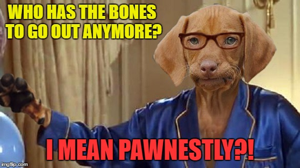 WHO HAS THE BONES TO GO OUT ANYMORE? I MEAN PAWNESTLY?! | made w/ Imgflip meme maker