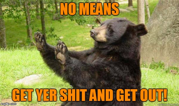 No Bear Blank | NO MEANS GET YER SHIT AND GET OUT! | image tagged in no bear blank | made w/ Imgflip meme maker