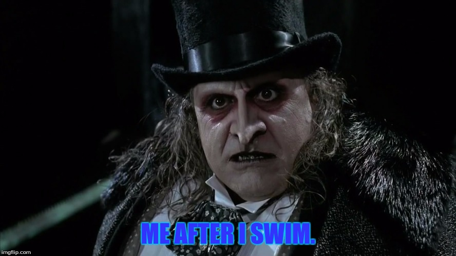 Penguin matter | ME AFTER I SWIM. | image tagged in penguin matter | made w/ Imgflip meme maker