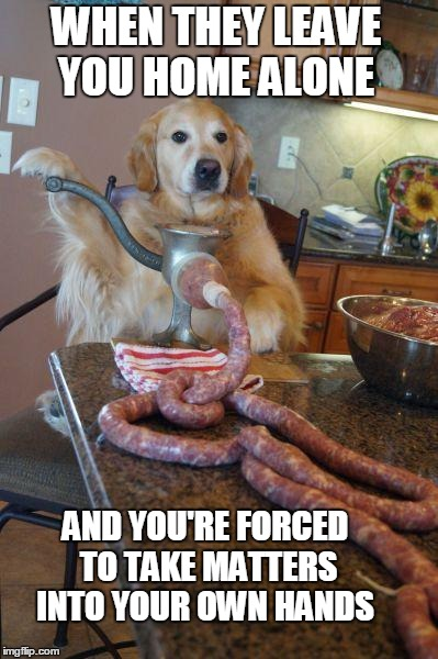 Not your regular Sausage Dog.  |  WHEN THEY LEAVE YOU HOME ALONE; AND YOU'RE FORCED TO TAKE MATTERS INTO YOUR OWN HANDS | image tagged in dog sausages,golden retriever,home alone,cooking,wurst | made w/ Imgflip meme maker