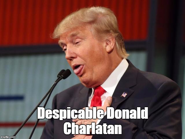 Despicable Donald Charlatan | made w/ Imgflip meme maker
