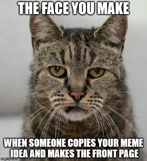 Cat meme maker / Trippki ico 9000 kb