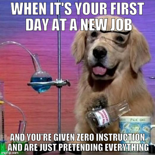 I Have No Idea What I Am Doing Dog | WHEN IT'S YOUR FIRST DAY AT A NEW JOB AND YOU'RE GIVEN ZERO INSTRUCTION AND ARE JUST PRETENDING EVERYTHING | image tagged in memes,i have no idea what i am doing dog | made w/ Imgflip meme maker