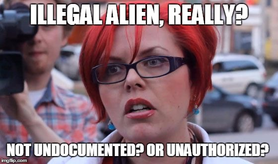 triggered | ILLEGAL ALIEN, REALLY? NOT UNDOCUMENTED? OR UNAUTHORIZED? | image tagged in triggered | made w/ Imgflip meme maker