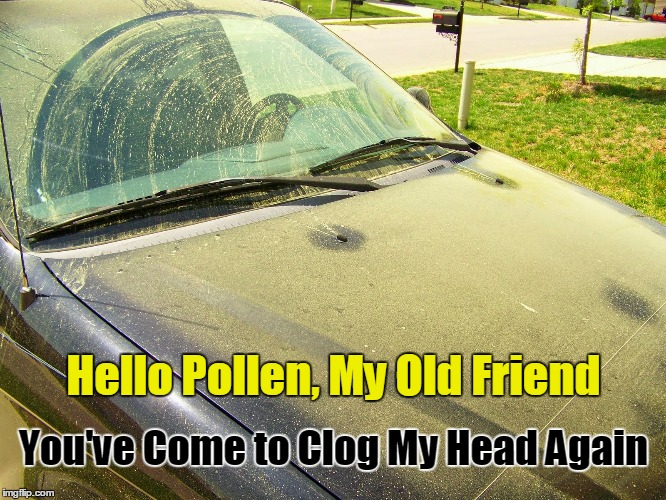 Pollen Season in Atlanta, Georgia | Hello Pollen, My Old Friend You've Come to Clog My Head Again | image tagged in pollen covered car,springtime,atlanta,georgia | made w/ Imgflip meme maker